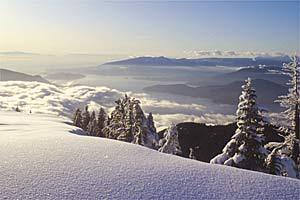 americas alp skier 3