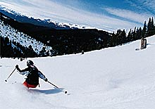 rbc3030_all_track_pro_130_alpine_052.jpg