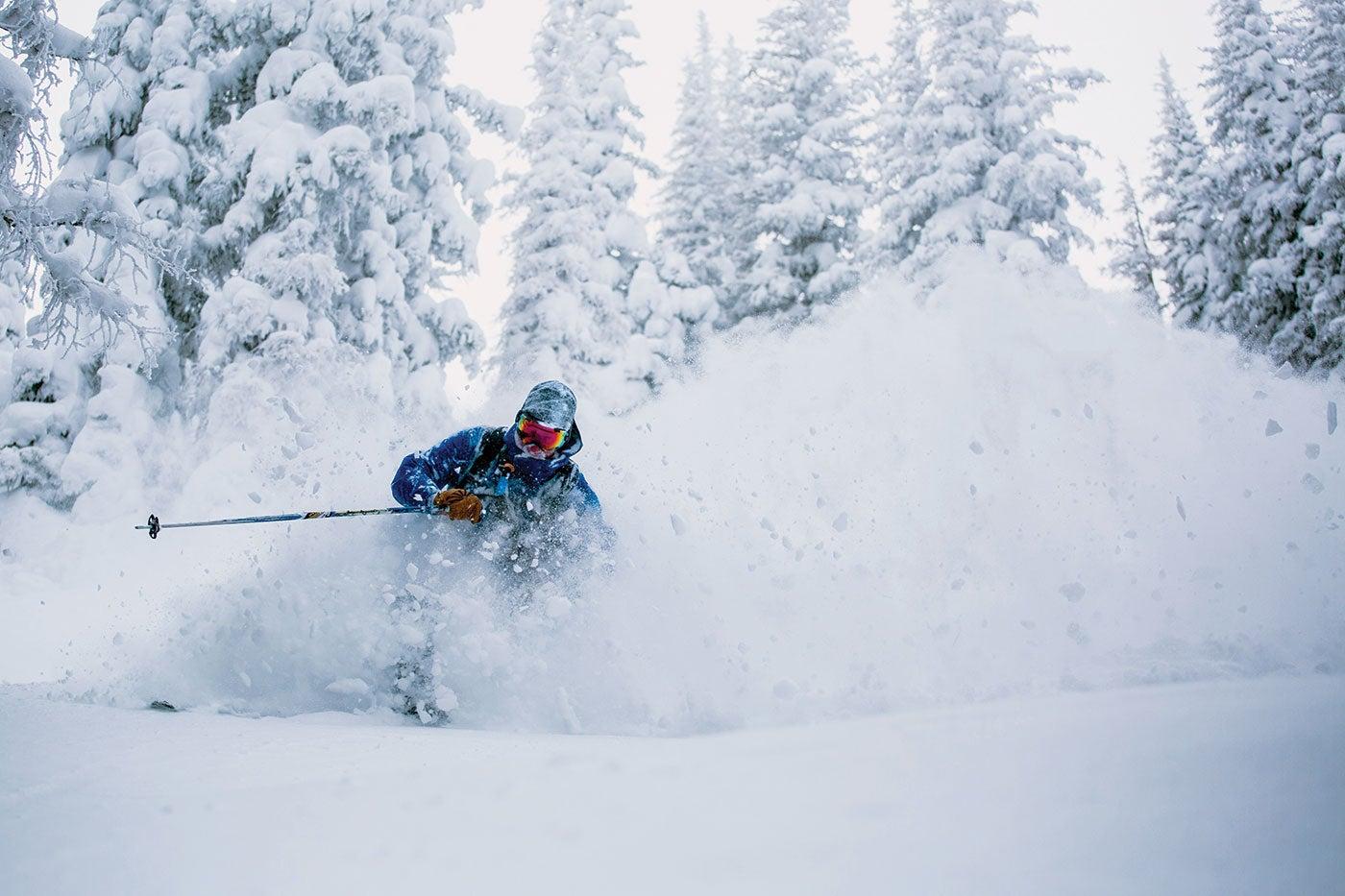 How To Ski Powder
