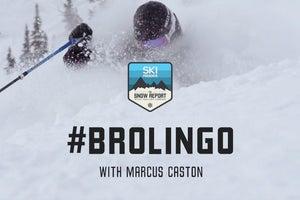 The Snow Report BroLingo
