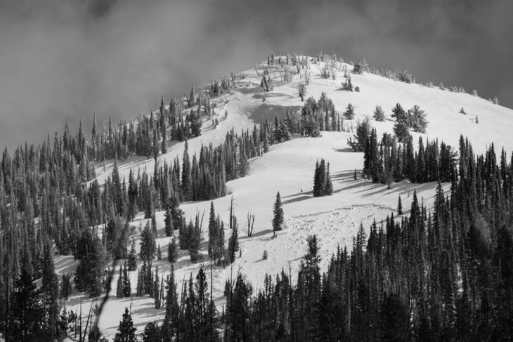 Banner Peak on Copper Mountain with avalanche crown